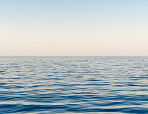 8 de Junho – Dia Mundial dos Oceanos